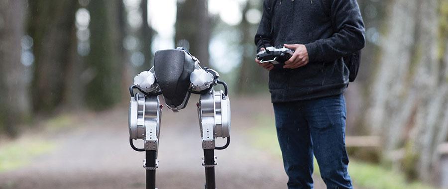 cassie the robot