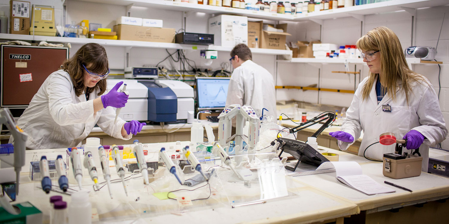 researchers in lab
