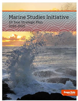 Marine Studies Initiative Strategic Plan PDF